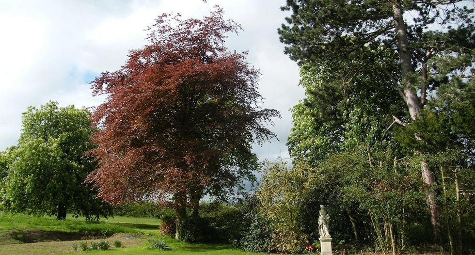 Garden_views_at_Glebe_House_B&B_Muston_B