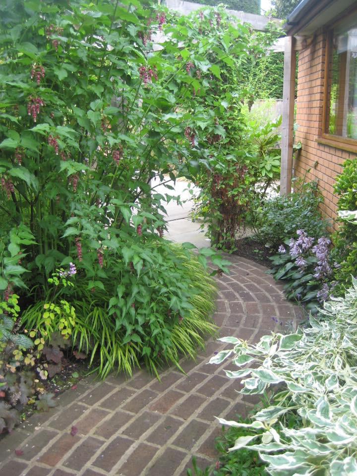 Lucy Shaw Garden Design curved pathway.j