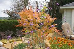 traditional gardens - Copy