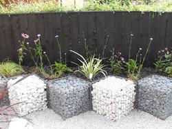 Modern front garden 3