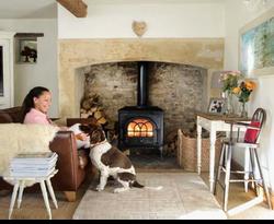 dog and stove 2