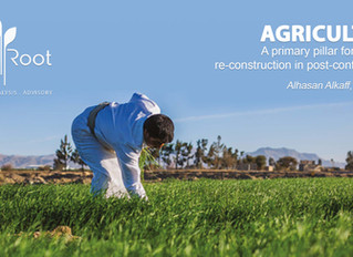 Agriculture: A primary pillar for economic re-construction in post-conflict Yemen