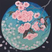 環の中の牡丹桜