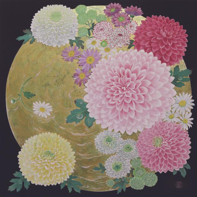 環の中の野菊、浜菊、ぽんぽん菊