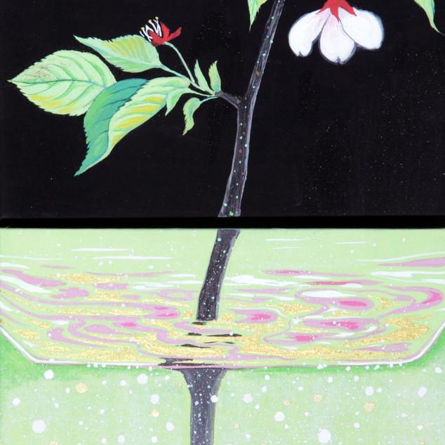 グラスに挿した葉桜