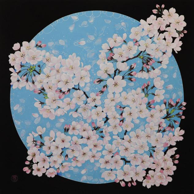 環の中の桜