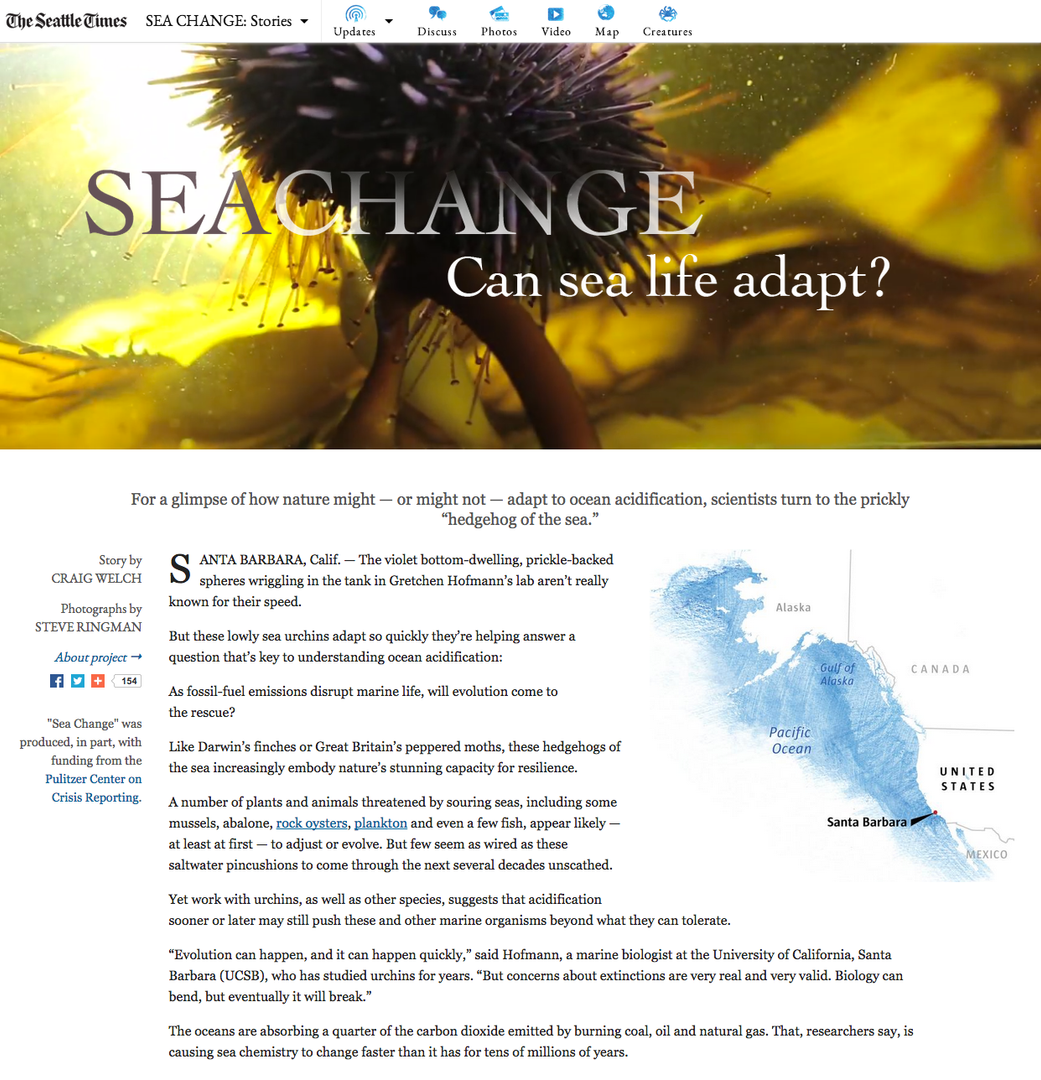 Online presentation of the fourth story in The Seattle Times' Sea Change series.