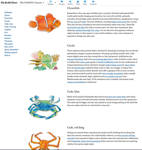 Creating an index of animals - illustrated in the same style as other graphics in the series - that play a role in the Sea Change story offered an alternative entry point to the series for readers.