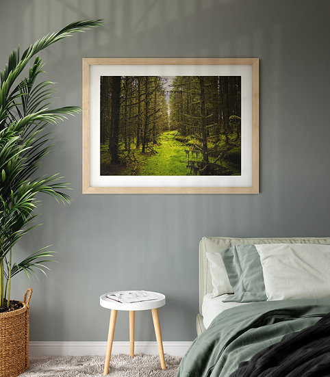'The Forest for the Trees' Print