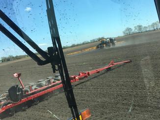 Field crew planting and spraying.jpg