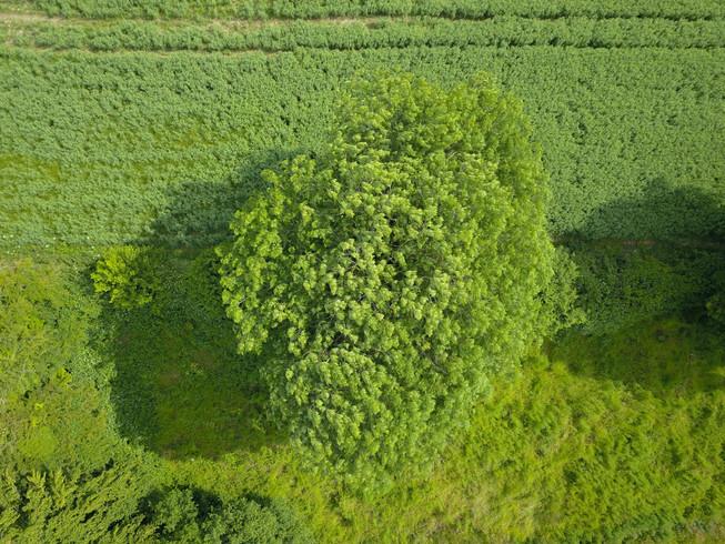 Photo prise par drone en normandie