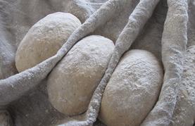 סדנת אפיית לחם מחמצת