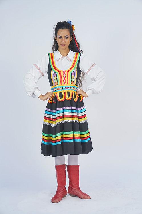פולניה