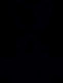 Dr-PawPaw_black_-logo.png