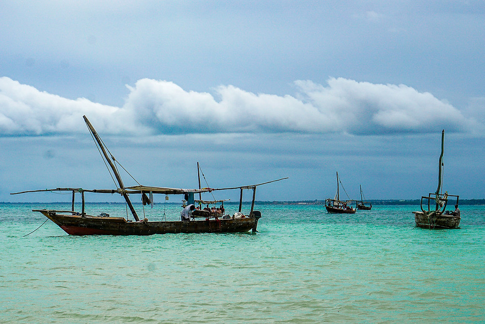 Dhow boats
