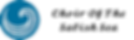 COTSS Logo2.png