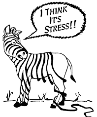 Struggling with Managing Stress?