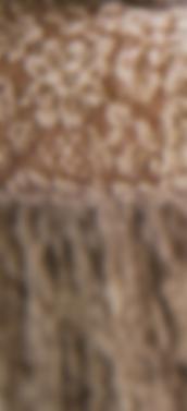 Screen Shot 2020-03-26 at 7.42.26 PM.png