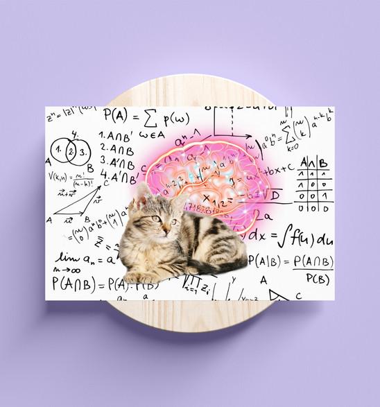 Brain Design