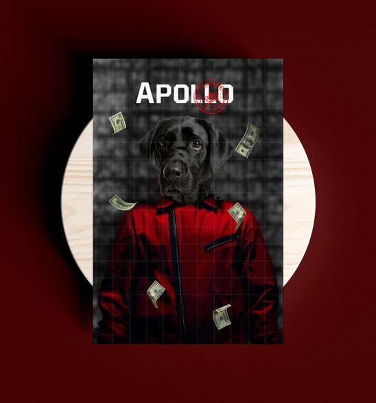 Apollo Design