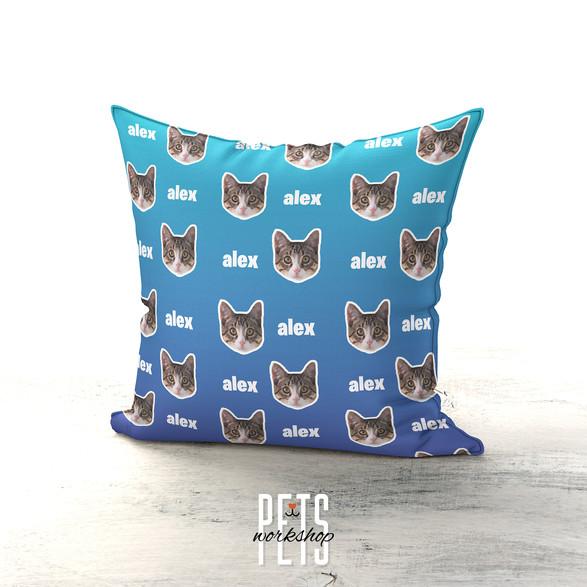 Blue Cat Design