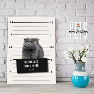 Prisoner Cat Design