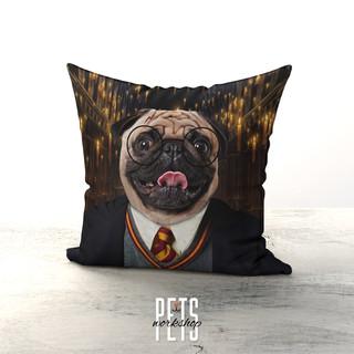 Potter Design