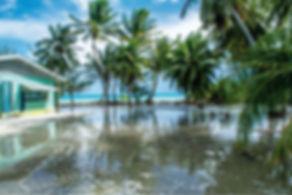 Figure 1 Flooding in Penrhyn Island of t