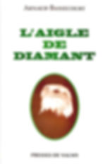 COUVERTURE L'AIGLE DE DIAMANT.jpg