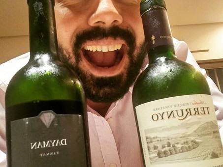 Vinhos chilenos, argentinos e uruguaios - experimentando além do óbvio