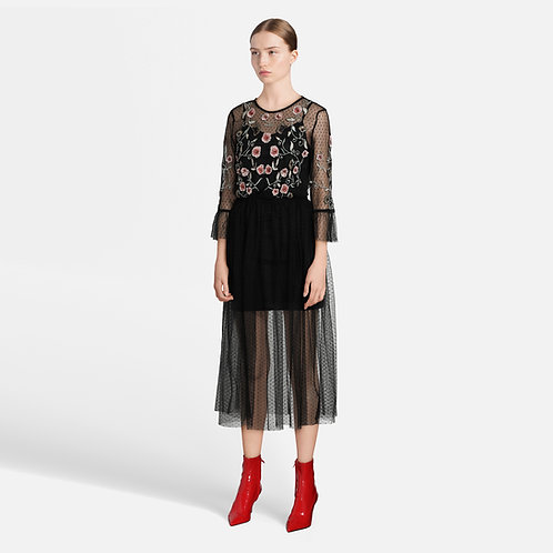 Transparent dress with embroidery