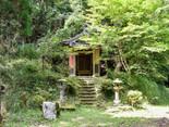 【生目神社】自然に溶け込んだ雰囲気抜群の神社