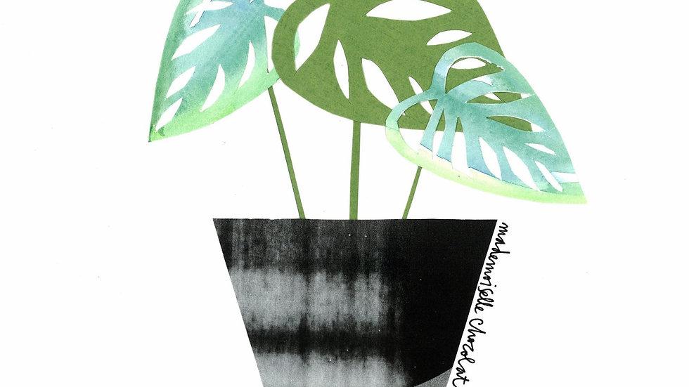 Print - Plant