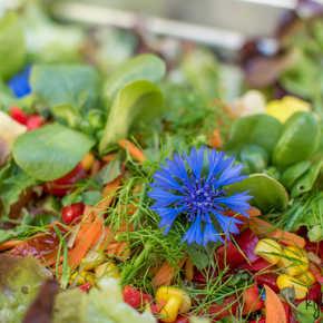 colourful food