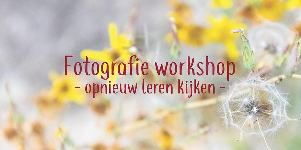 WORKSHOP OPNIEUW LEREN KIJKEN & FOTOGRAFEREN
