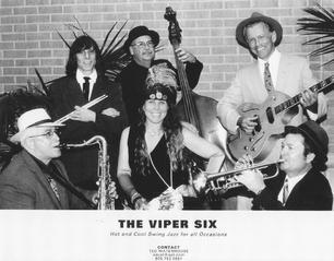 viper 6 sm.jpg