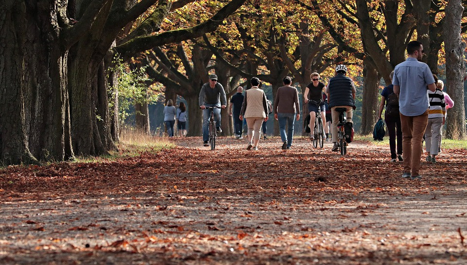 People going through a streen full of leaves