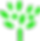 tree for website.png