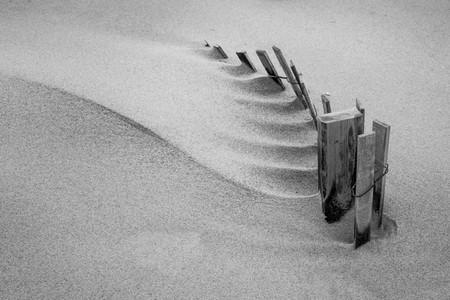 Sand Fence Sculpture