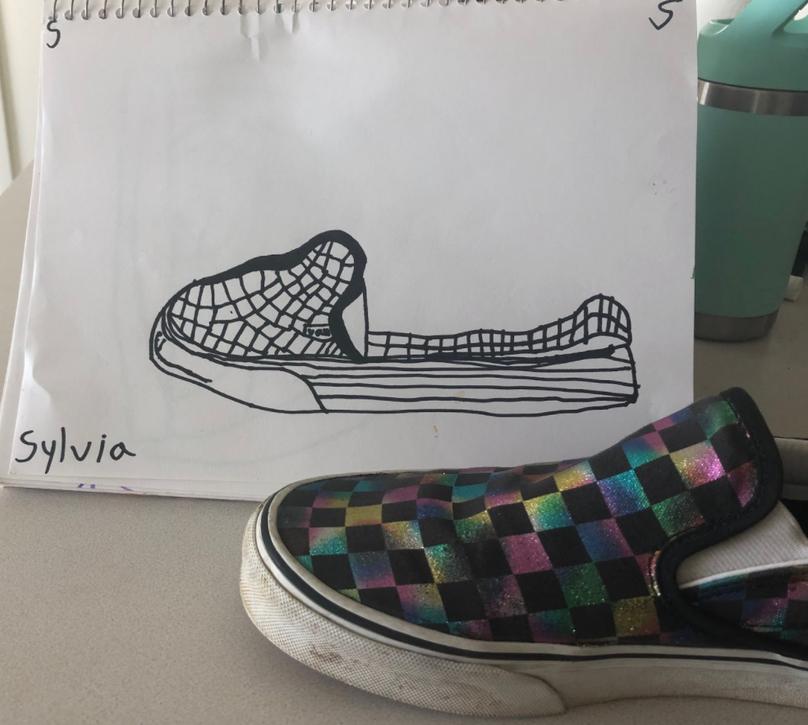 Contour Shoe Drawing