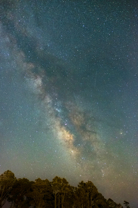 Milky Way and Lyrid Meteors