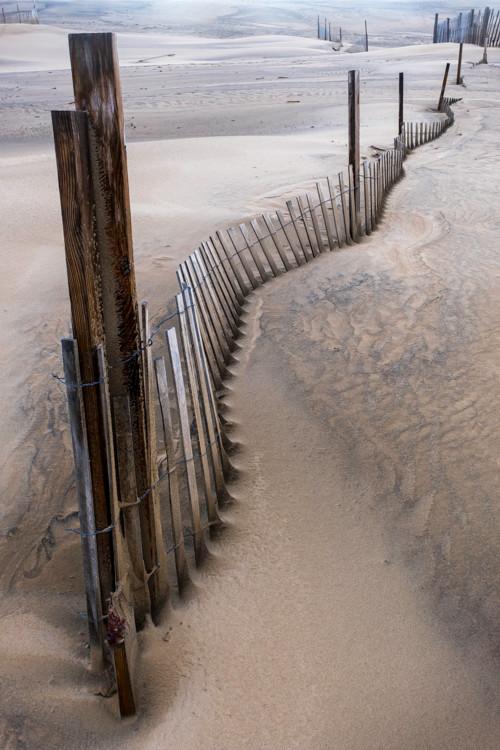 Jockey's Ridge Sand Fence
