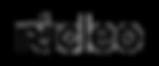nucleo logo transparent.png