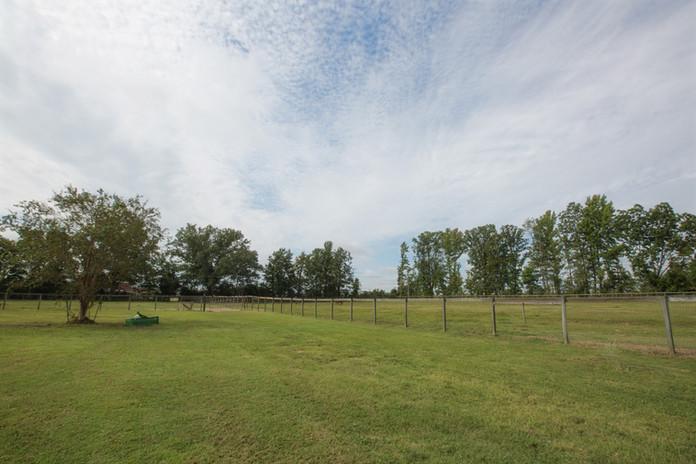 Pasture View 2