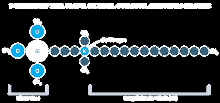 Q-Shield Composition.png