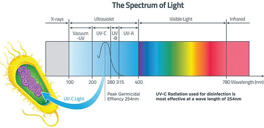 UVC - The Spectrum of Light (2).jpg.png