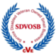 SDVOSB-LambITEngineering-1024x1016.png