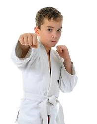 karate_kid.png