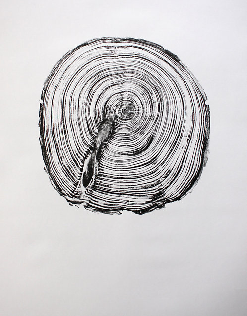 Wood Print. Pine