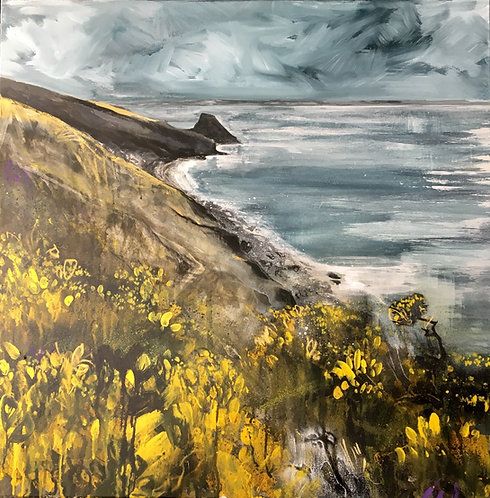 Rickets Head with gorse